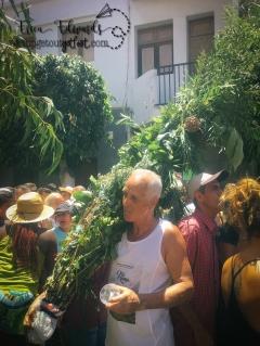 Agaete, Gran Canaria. La Bajada de La Rama. 8-4-2017 (19) WM.jpg