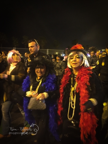 Carnaval Las Palmas de Gran Canaria Entierro de la Sardina 3-2017 (32) CGP FSC WM