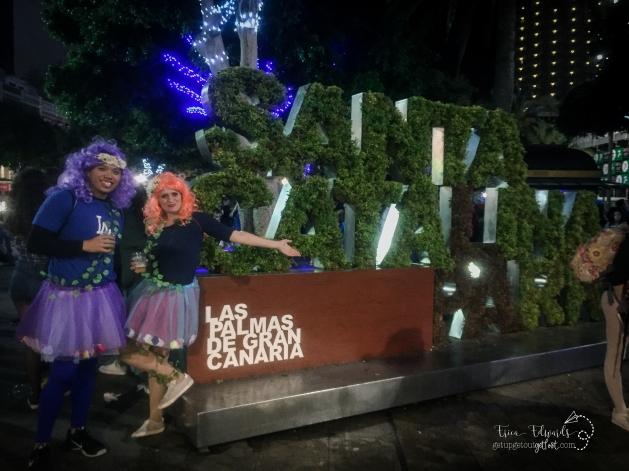 Carnaval Las Palmas de Gran Canaria francis faries 2-2017 (9) WM