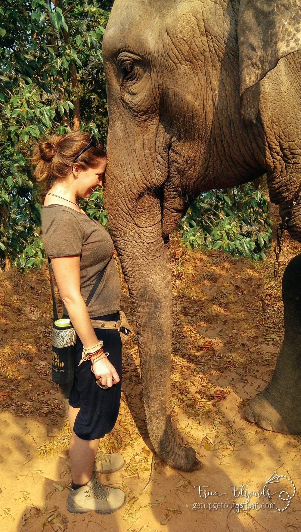 Surin Project: Elephant Conservation in Thailand